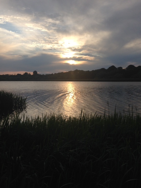 the view this evening from Wassand hide
