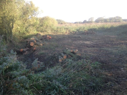 cleared Willows down in Heslops - Jeff Cox